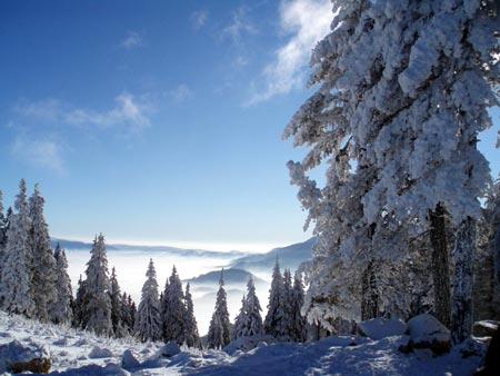 Neige et montagne