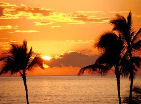 Soleil sous les tropiques