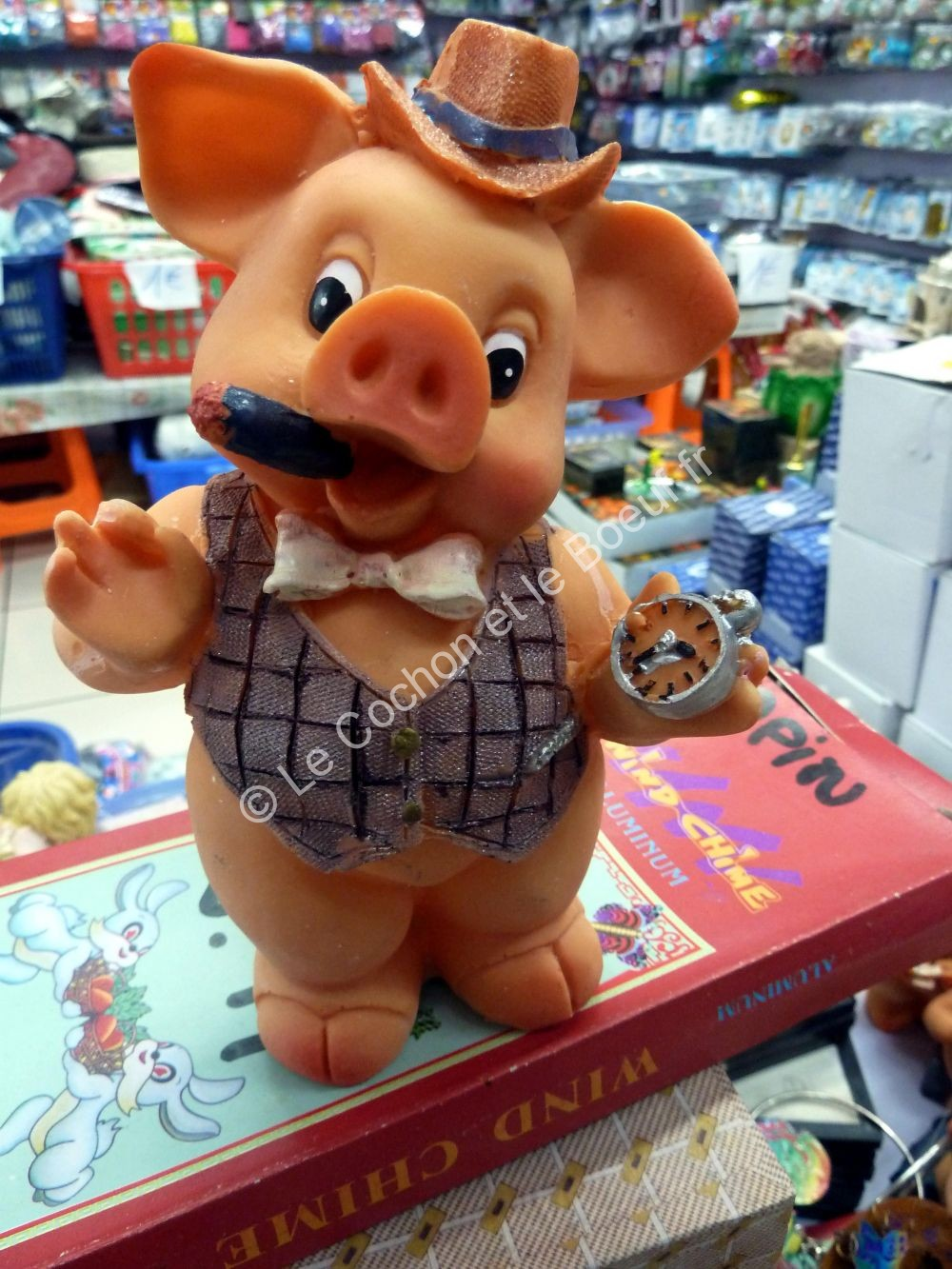 Cochon cigare