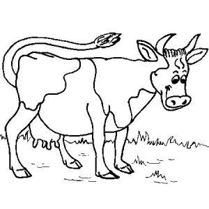 Vache a colorier