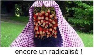 Radicalise